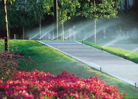 Szép zöld parkokban csak feltöltődni lehet...